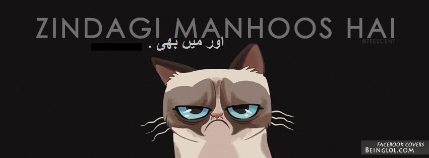 Desi Grumpy Cat