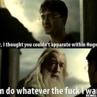 Dumbledore Breaks All The Rules