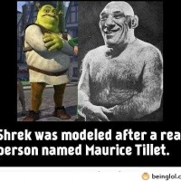 Did You Know That Shrek Was Modeled After A.....
