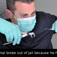 Did You Know That A Swedish Criminal Broke Out Of Jail Because He Had A…