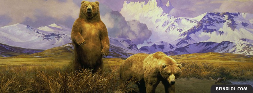 Alaskan Brown Bear Facebook Covers