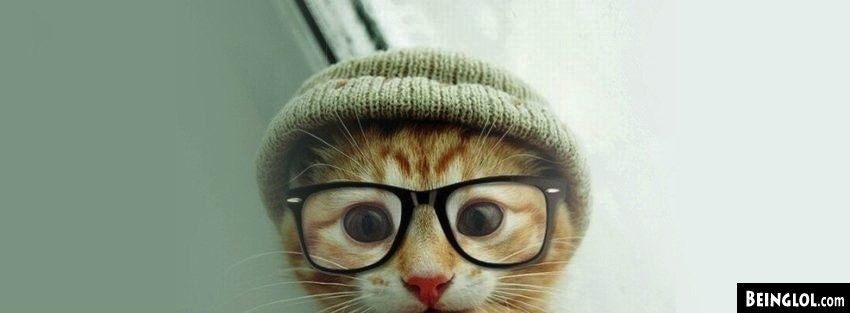 Cat Hat Glasses