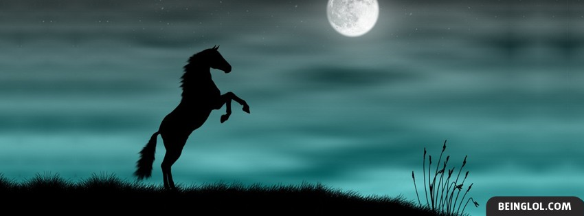 Horse In The Moonlight Facebook Covers