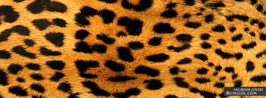 Leopard Print Facebook Covers