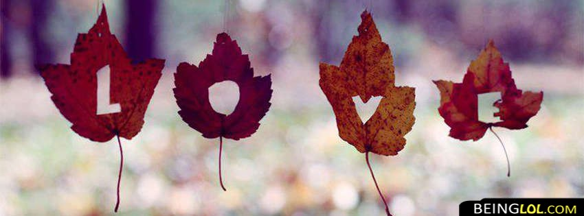 Love in leaves facebook cover love in leaves cover 99 love love in leaves facebook covers altavistaventures Images