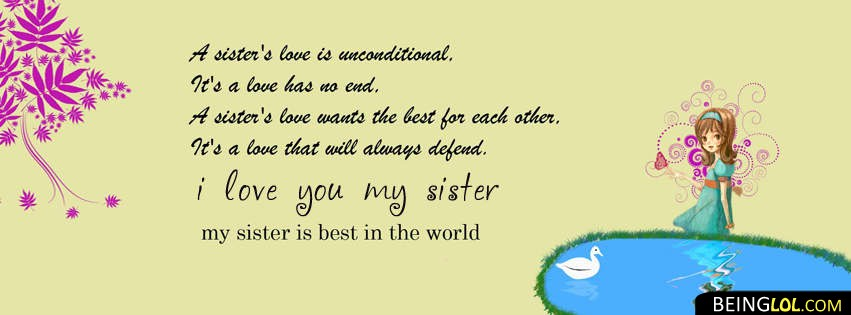 Love You Sister Facebook Covers