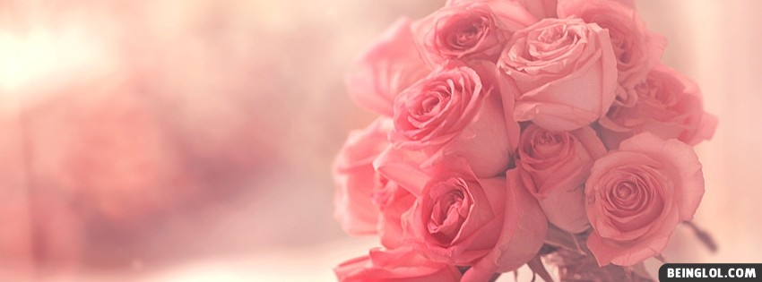 Pink Roses Facebook Covers