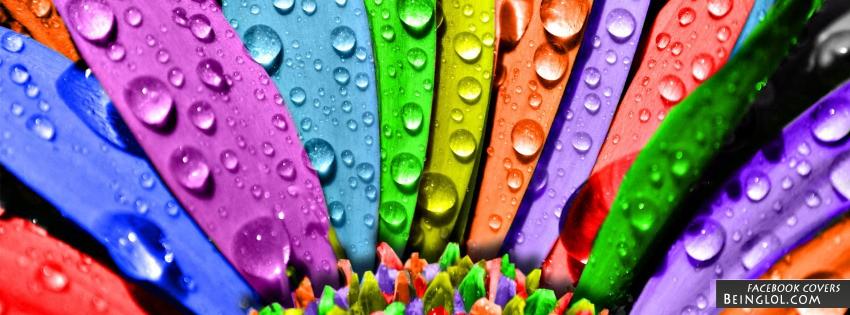 Rainbow Petals