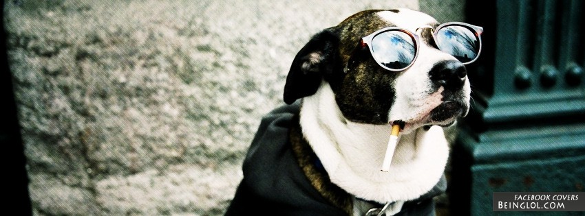 Smoking Dog Facebook Covers