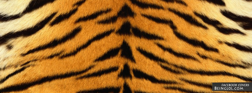 Tiger Print Facebook Covers