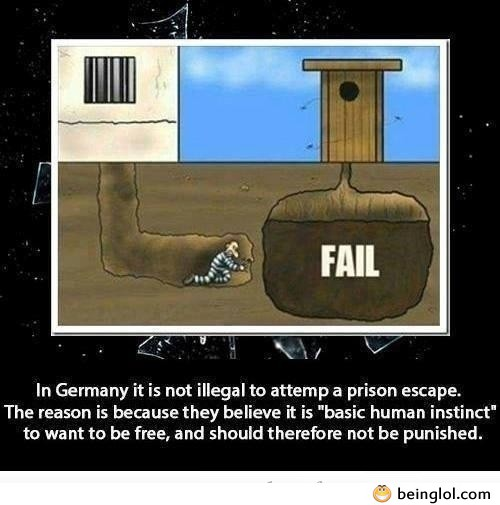 Did You Know That In Germany It's Not Illegal to Atempt a Prison Escape And...