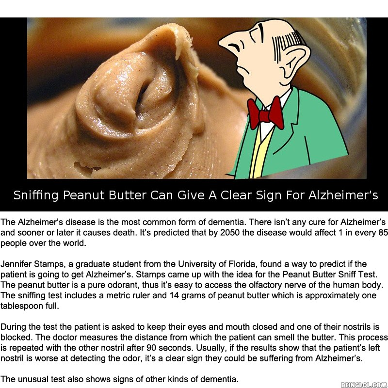 Did You Know That a Sniffing Peanut Butter Can Give a Clear Sign For..