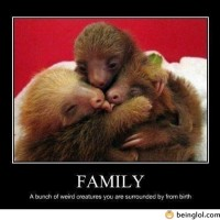 Family – Funny Definition