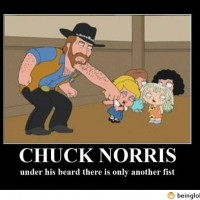 Another Chuck Norris Joke
