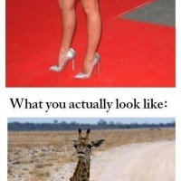 What Girls Think They Look Like In Heels