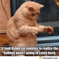 Damn Ralph, You're Slow