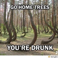 Go Home Trees!
