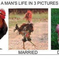 A Man's Life In 3 Pictures