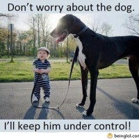 Don't Worry About The Dog