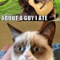 Grumpy Cat Is Smiling