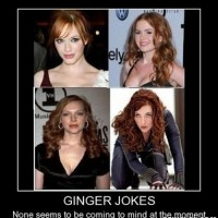 Ginger Jokes !