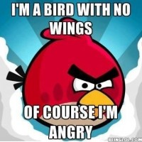 The Reason Why The Angry Birds Are Always Angry!