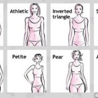 Female Body Types ...
