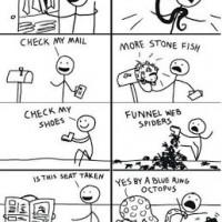 Life In Australia ...