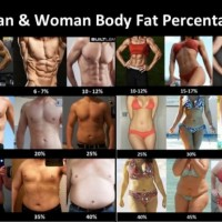Man & Woman Body Fat Percentage