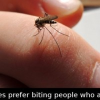 Did You Know That Mosquitos Prefer Biting People Who Are….