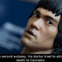 Did You Know That During Bruce Lee's Second Autopsy His Doctor Tried To Attribute His Cause Of Death To…