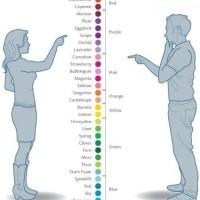 Women Vs Men Colour Differentiation