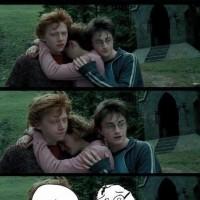 Darn You Harry! Xd