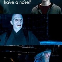 Omg Harry, You Can't Ask That.
