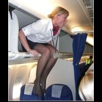 Female Flight Attendant ...