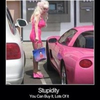 Stupidity You Can Buy It
