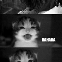 Hahahah No..!