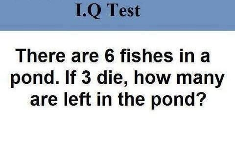 How many Fish left in the pond?