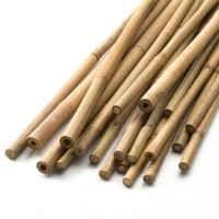 How many  sticks are there?