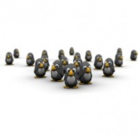 How many penguins can you see?